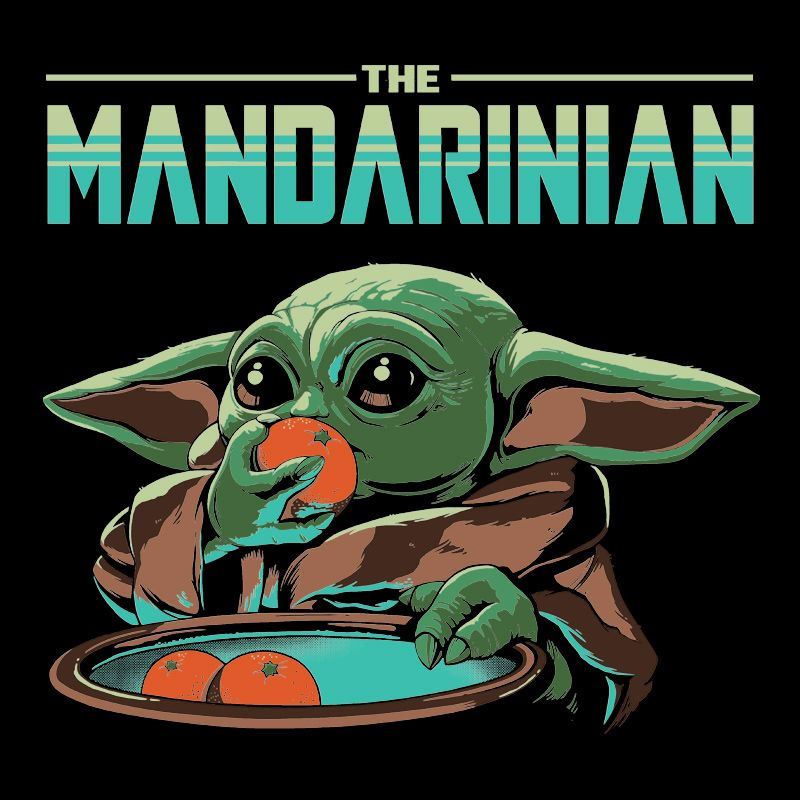 Camiseta The Mandarinian